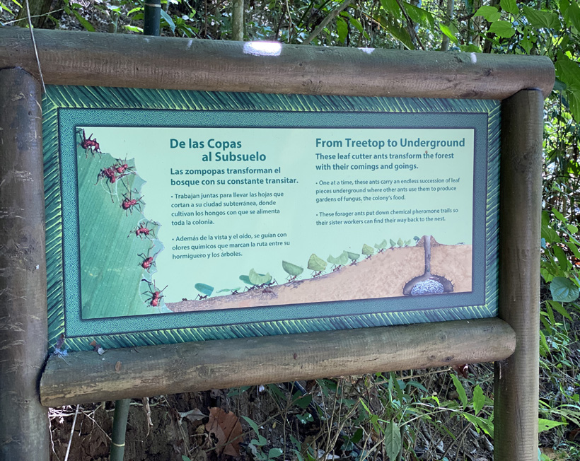 infobord in carara nationaal park