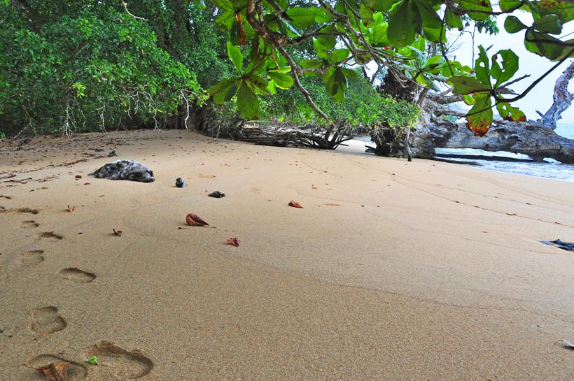 schuilen op la piscina beach op isla colon