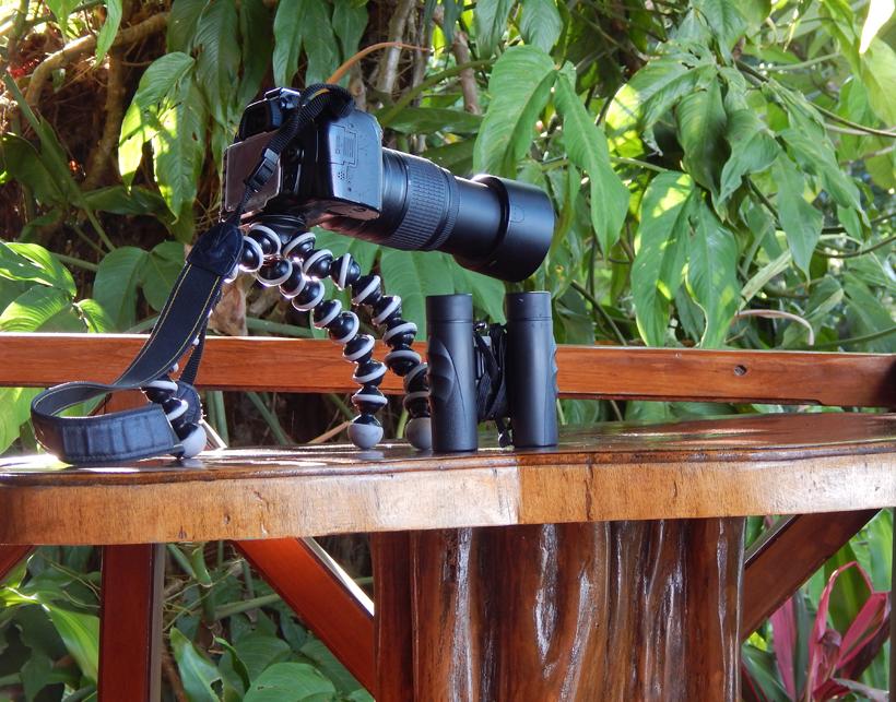 flexibel statief birdwatching costa rica