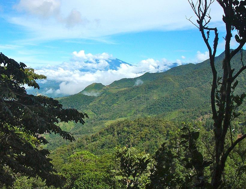 groene hooglanden bij Boquete