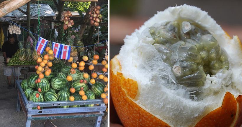 fruitkraampje Costa Rica