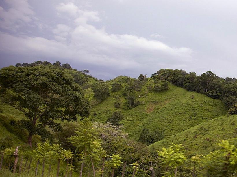 groene heuvels naar boquete