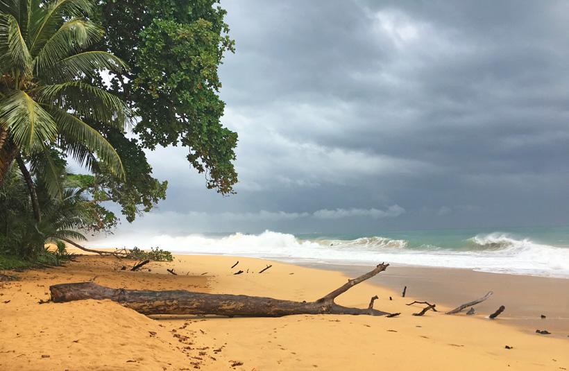 bluff beach onweerslucht