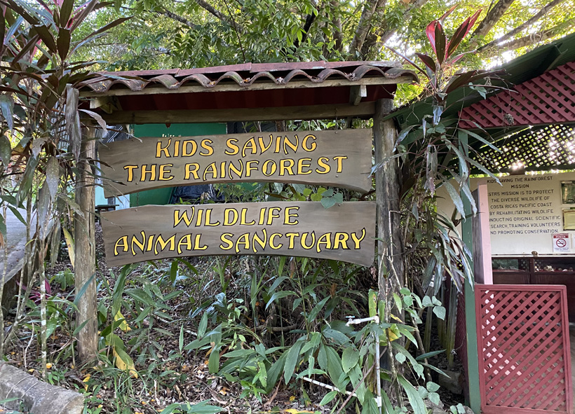 opvangcentrum kids saving the rainforest