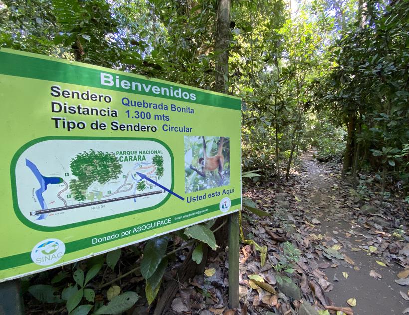 luswandeling in carara nationaal park