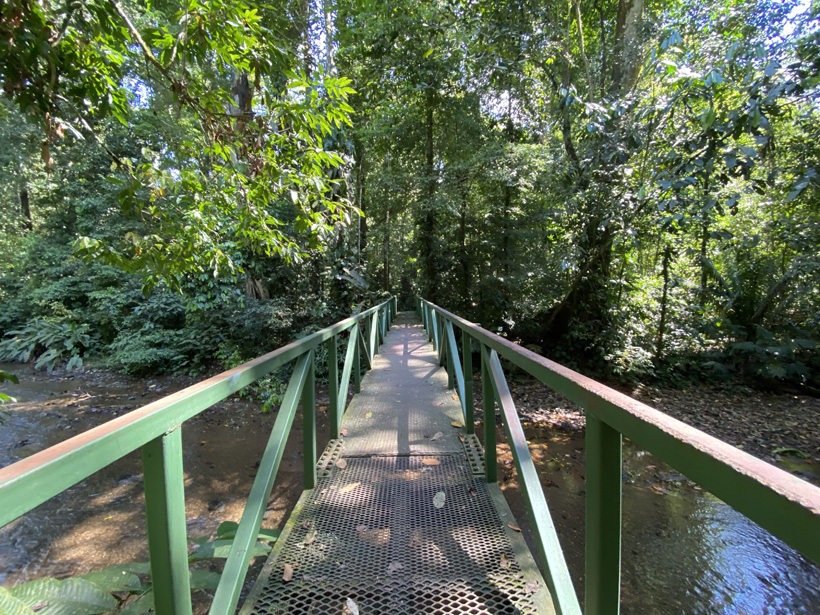 brug over rivier in carara nationaal park
