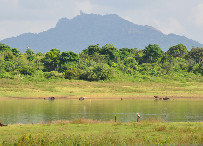 maduru oya reservoir bij Maha Oya