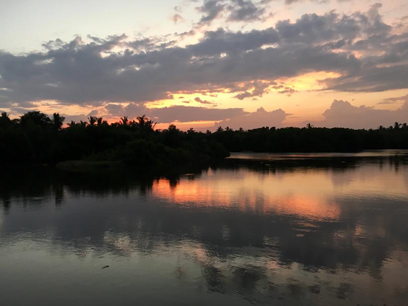 tangalle mangrove na zonsondergang