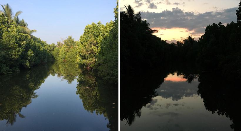 reflecties water tangalle mangrove
