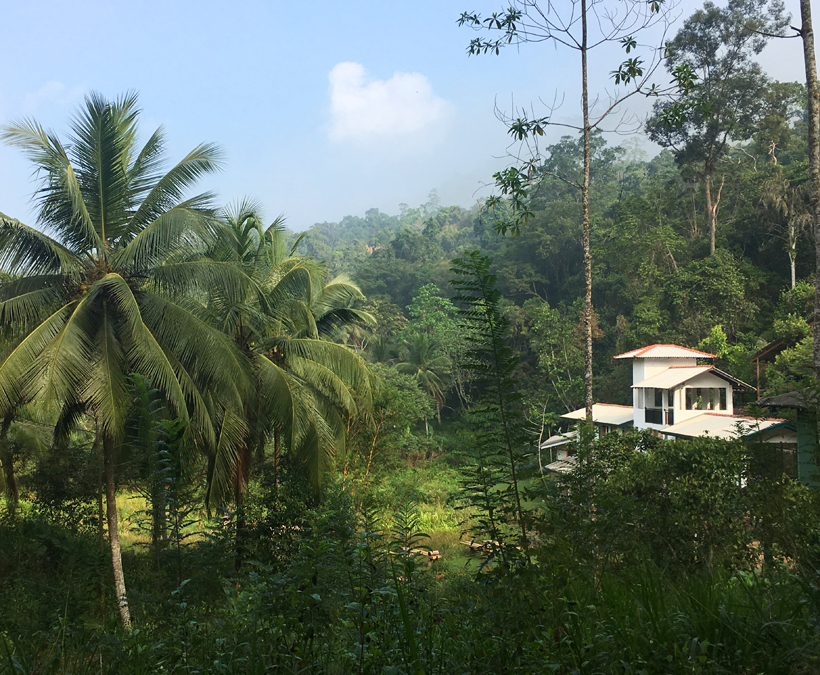 Sinharaja forest edge logement