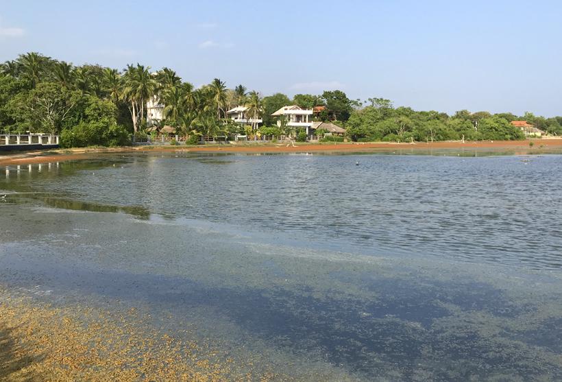 tangalle-lagoon