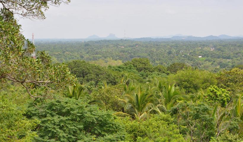 uitzicht vanop rots logement Dambulla
