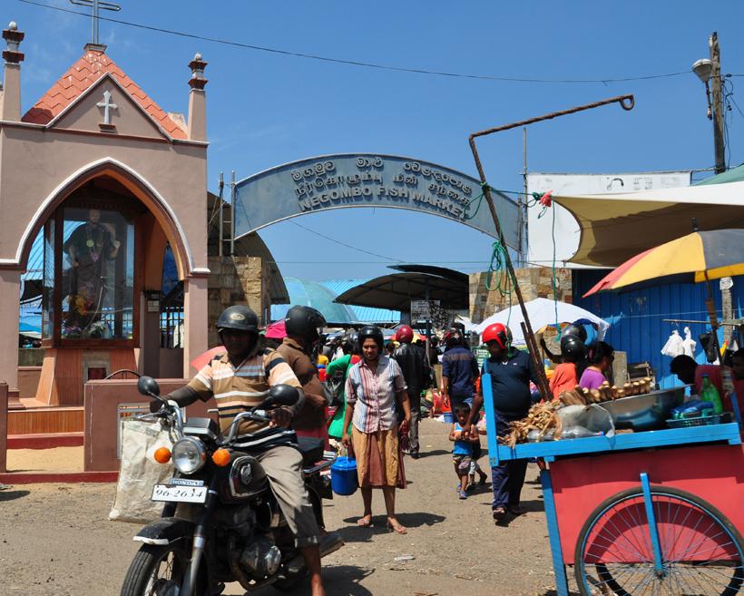 vismarkt iNegombo