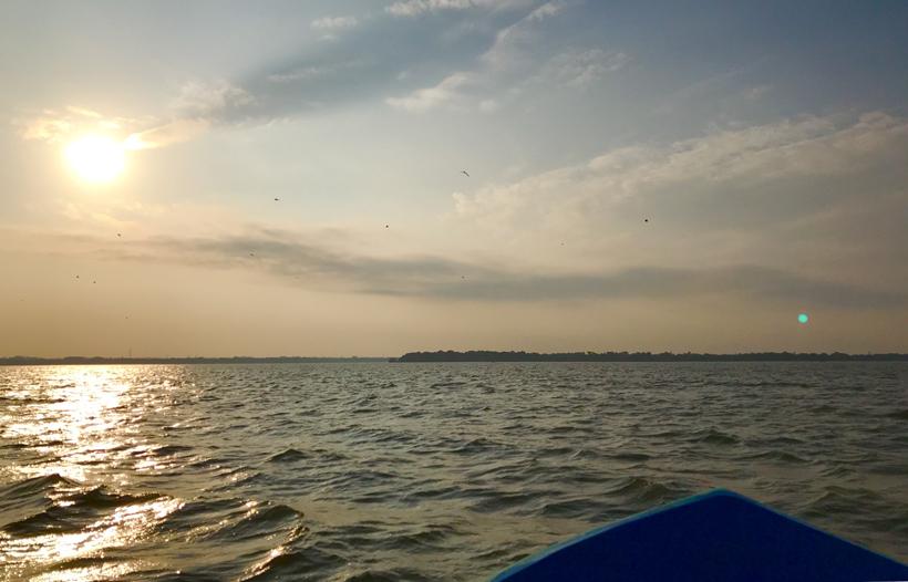 vroege canal tour Negombo Lagoon
