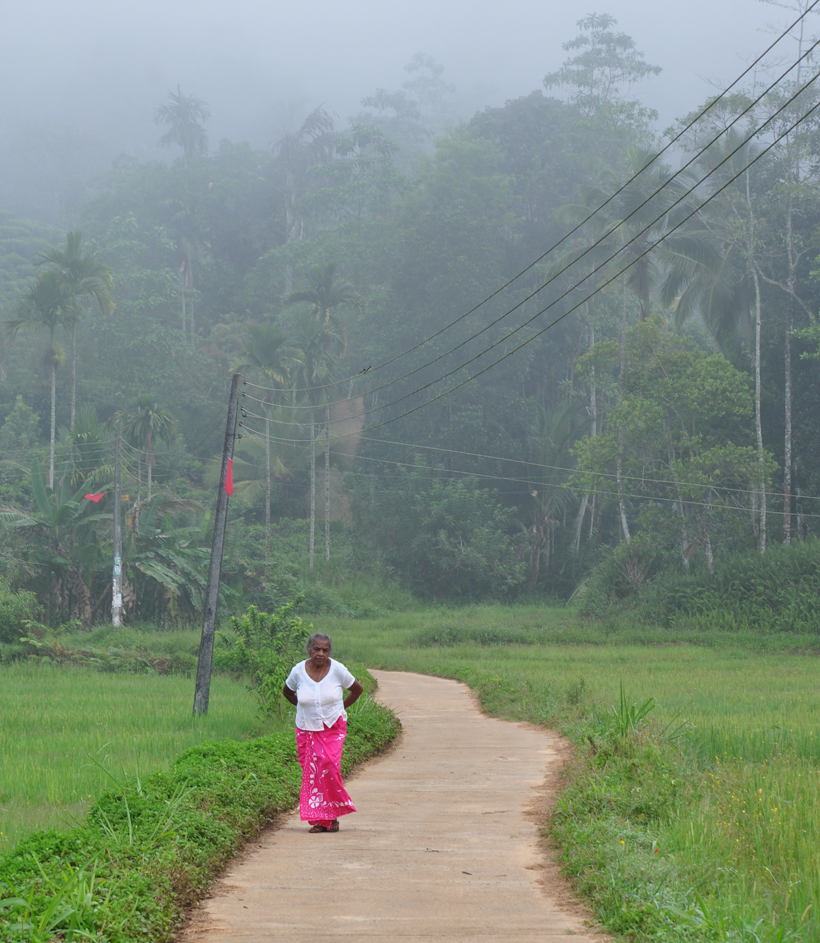 Sri Lanka oude dame bij Sinharaja