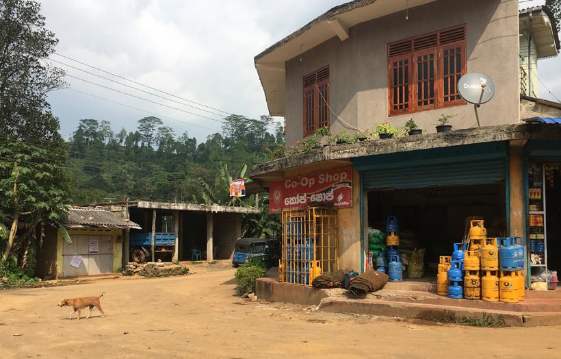 dorpje rand Sinharaja regenwoud