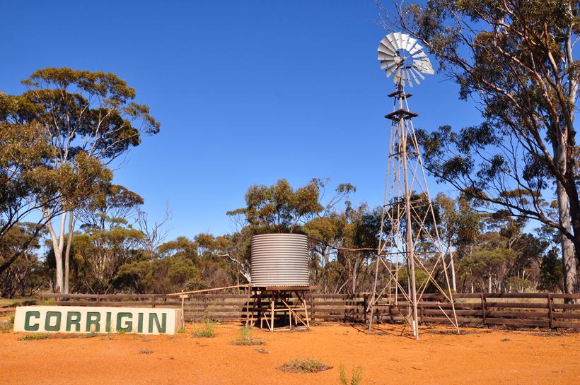 corriging in western australia