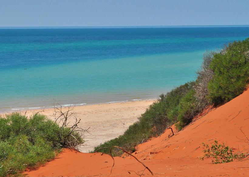 outback en zee met dolfijn francois peron
