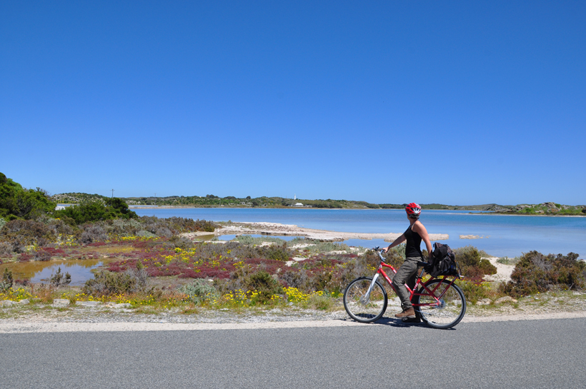 fietsen op Rottnest Eiland