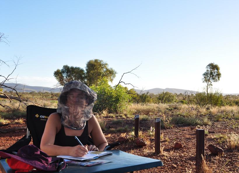 bescherming tegen bush flies in karijnii nationaal park