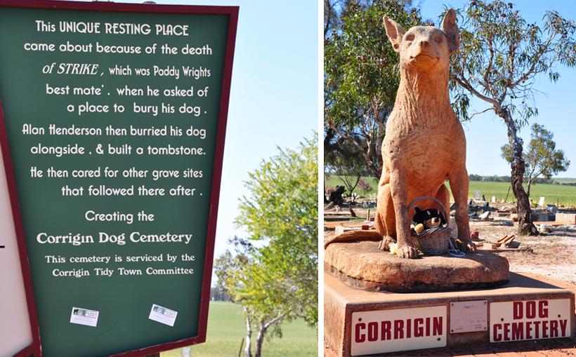 hondenkerkhof in corrigin in western australia