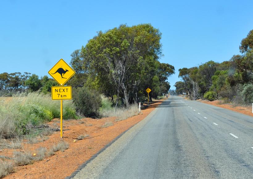 rijden door graanschuur in western australia
