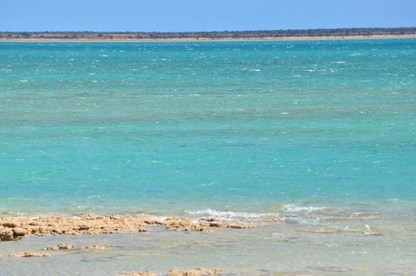 gladstone bay zee