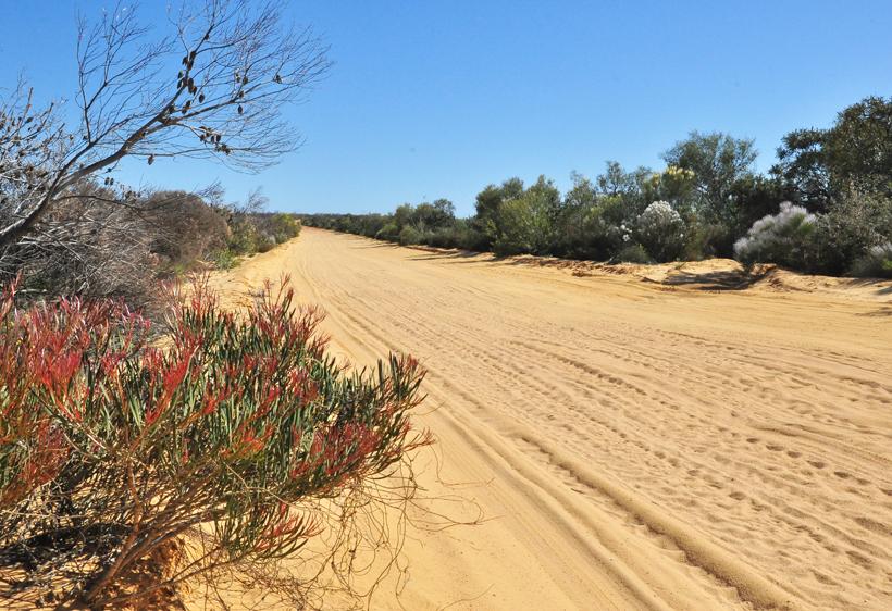 zandweg naar Kalbarri Nationaal Park