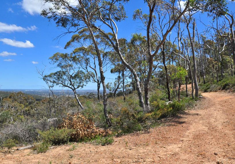 wandelen in perth hills