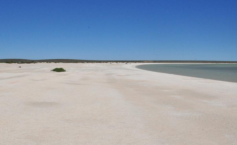 shell beach baai