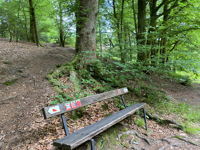 wandelen in Herbeumont langs trails
