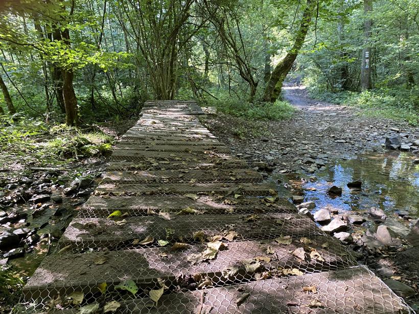 brugje wandeling bos nassogne