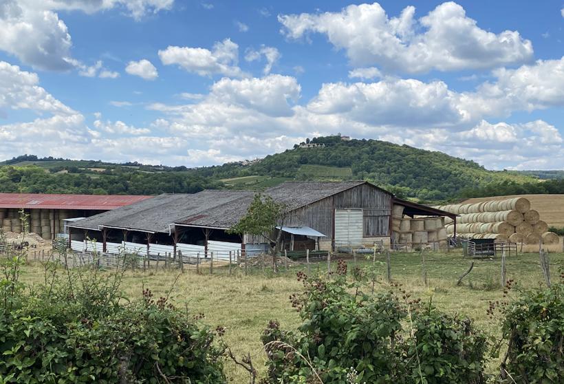 landschap Vezelay in de Morvan