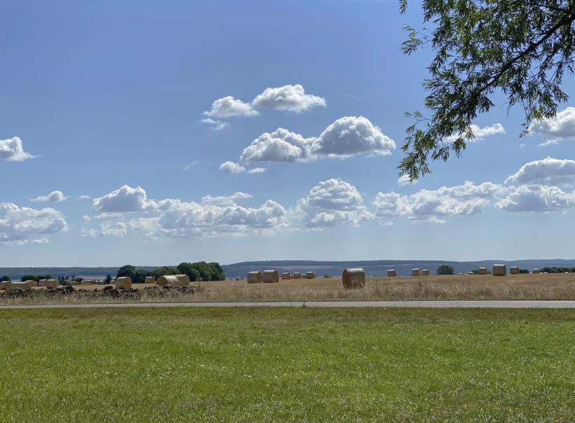 graanvelden in Bourgogne