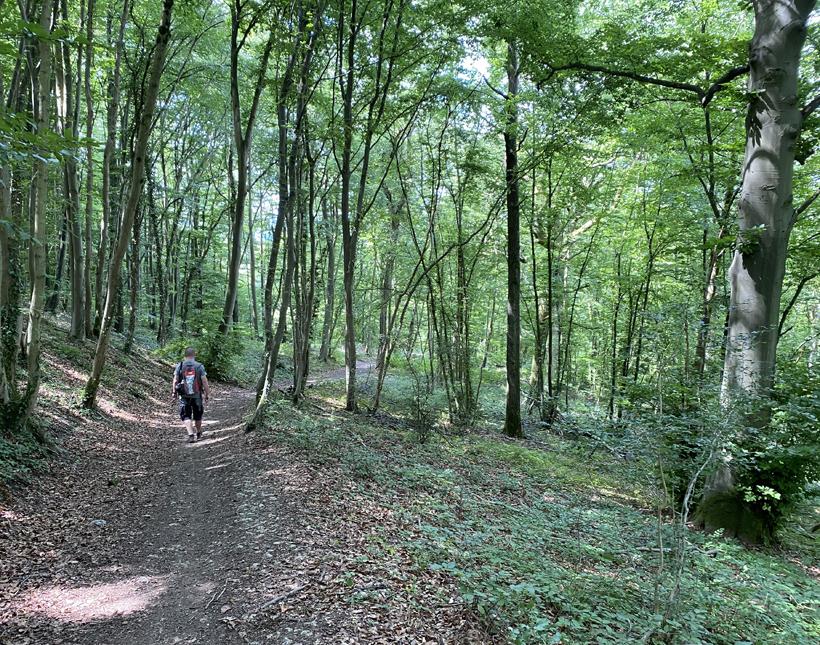 wandeling naar abdij Rochefort