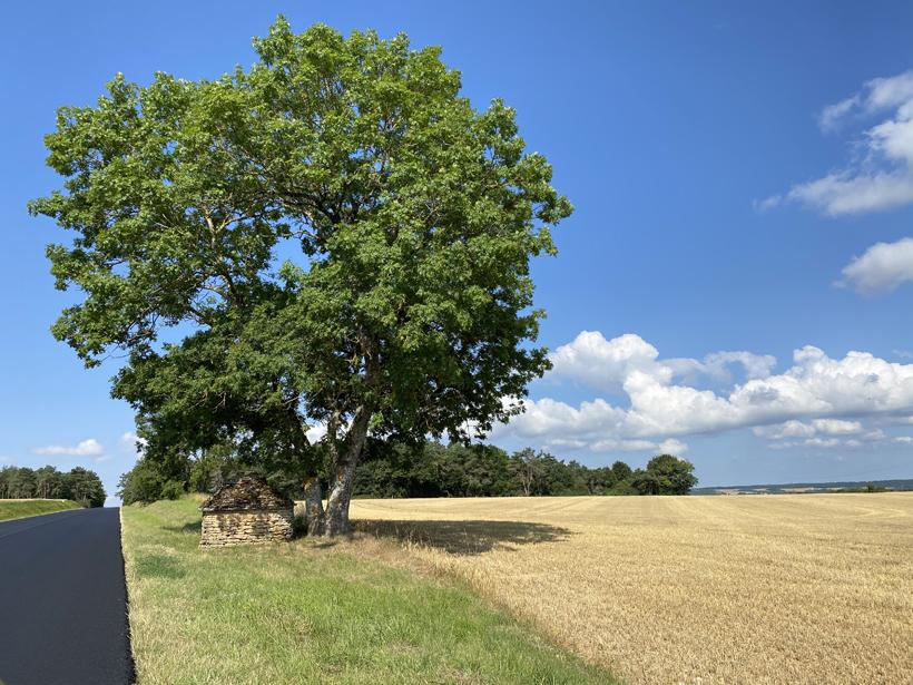 oude schuilhut bourgogne naar de Morvan