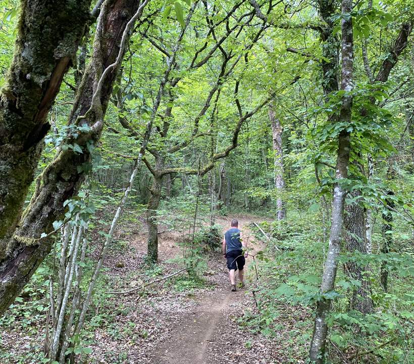 wandelen in rozereuilles bos