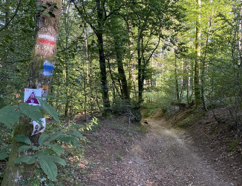 wandeling les Cléments Glux-en-Glenne in het dal