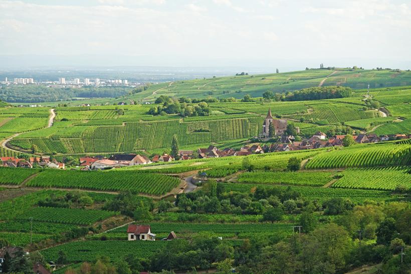dorpje in Elzas bij Ribeauville