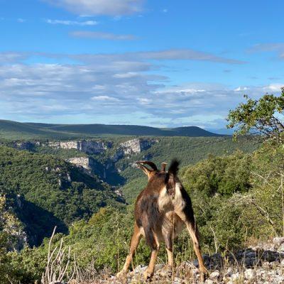 Weg van de massa in de Ardèche