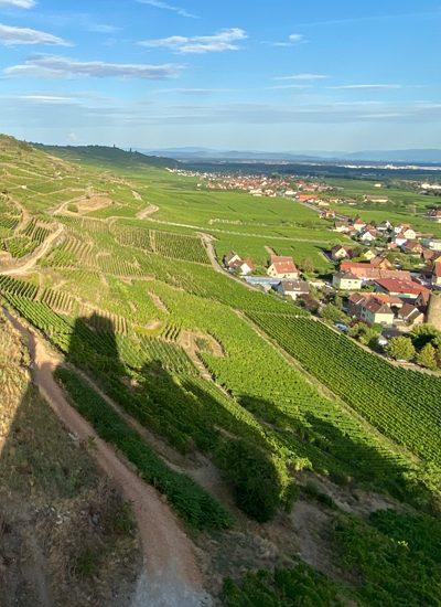 wijngaarden en dorpen vanop kasteel Kaysersberg
