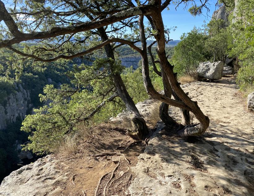 wandeling bois païolive Ardèche