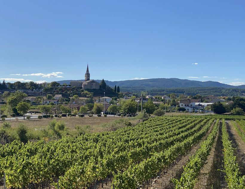 wijngaarden bij vogue Ardèche