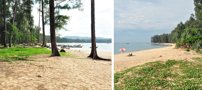 natuur vlakbij luchthaven Phuket