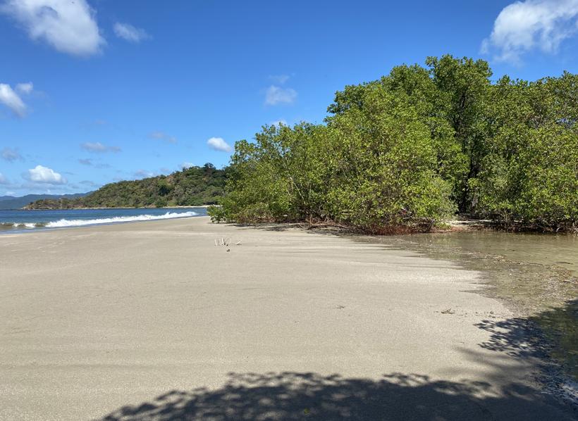 Playa Rajada zee en mangrove