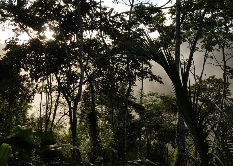 zon door de nevel in Costa Rica