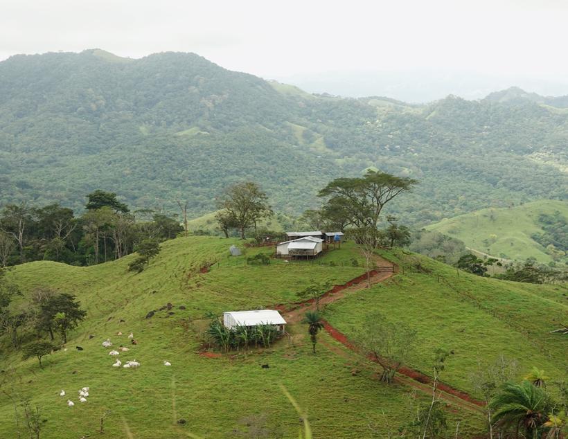 groene heuvels in Los Andes bij Tierra Madre