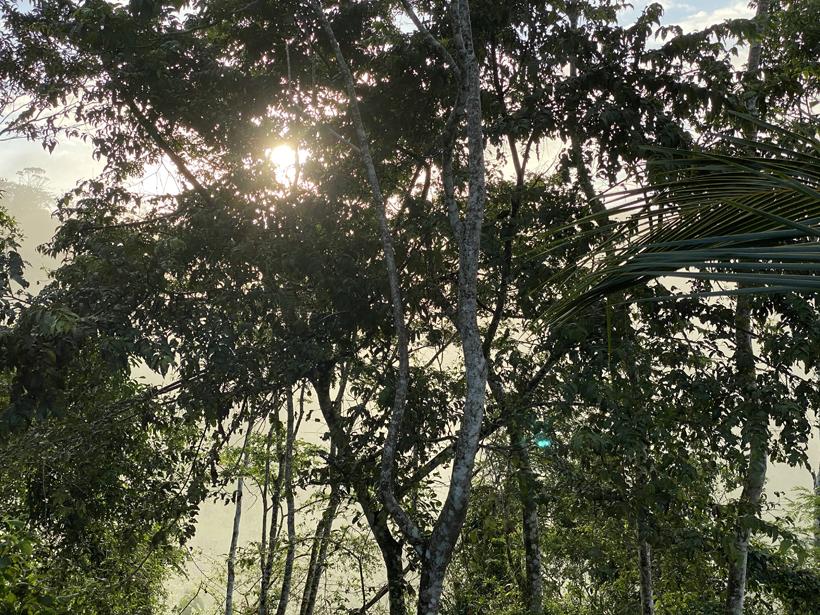 verborgen parel voor natuurliefhebbers in Costa Rica