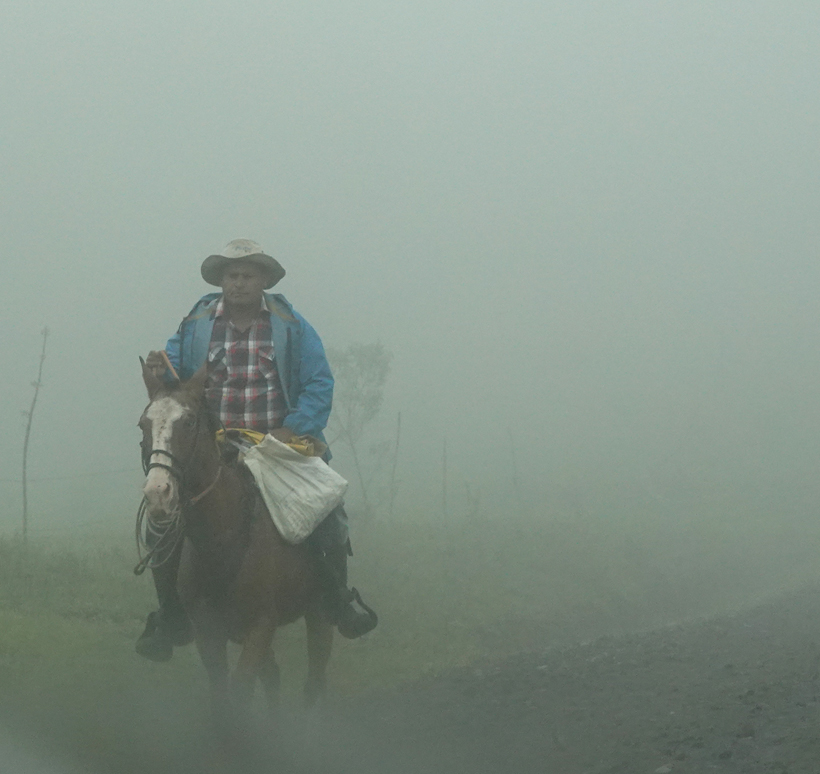 cowboy in sluier mist
