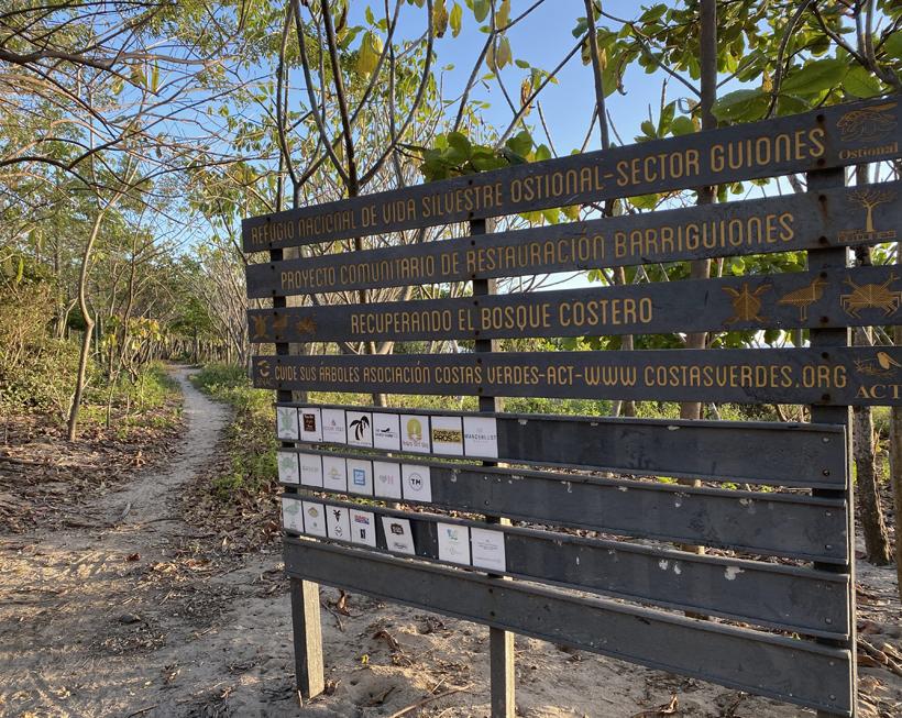 ostional wildlife refuge playa guiones